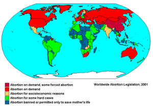 Women, Abortion, Pregnancy, Worldwide, Aid, Overseas, Ban, Reversal, Mexico City Policy